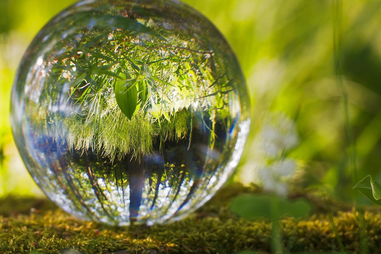 קורס איכות הסביבה - מקוצר